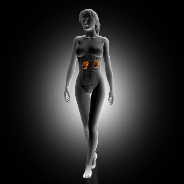 calculo renal afeta as mulheres também